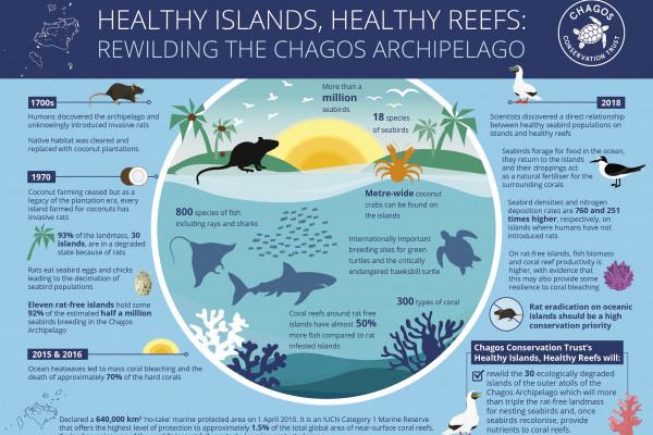 Healthy Islands, Healthy Reefs Infographic