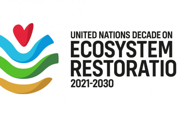 Supporting the Decade of Ecosystem Restoration