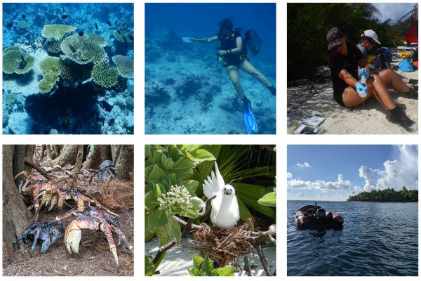 World Oceans Day: Exploring remote oceans using traces of DNA